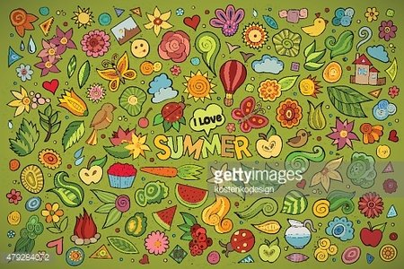 Summer nature symbols and objects