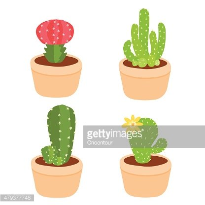 Cute and colorful cactus pot vector