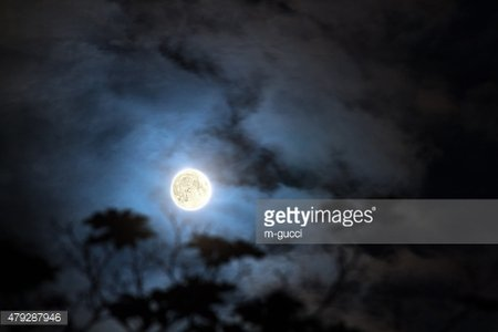 Silhouettes of the forest with Moon and clouds