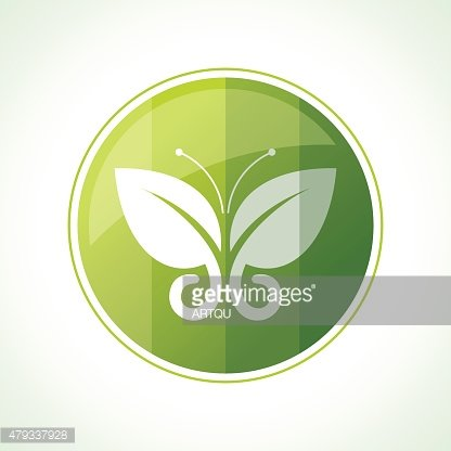 Ecology icons with green leaves in vector