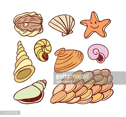 sea shells doodled icons, vector illustration.