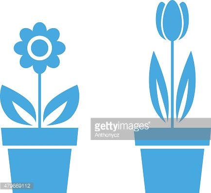 Blue flower icons