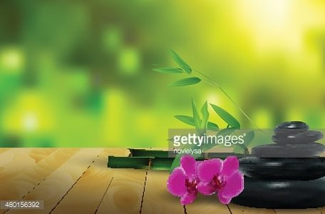 Stone, Flower, Wax and Bamboo ON The Wood Background premium ...