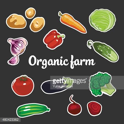 Collection of Vector Vegetables Stickers