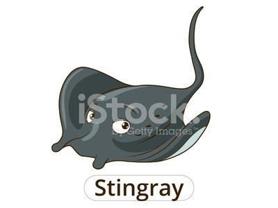 Stingray Mar Animales Peces De Dibujos Animados Ilustracion Para