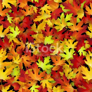 Vector seamless pattern with red and yellow autumn leaves