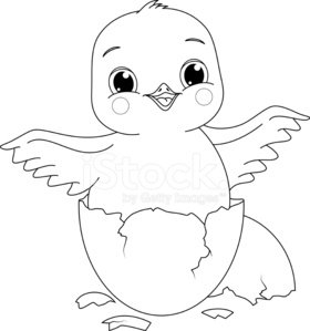 Chicken Coloring Page Clipart 1 566 198 Clip Arts