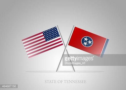 United States of America State of Tennessee Mini Flag Series