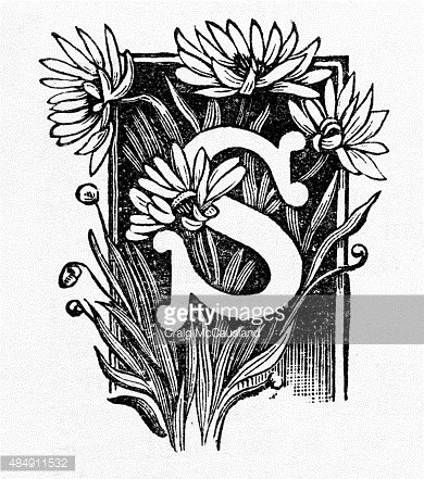"""Woodcut of a Capital """"S"""" with Daisies Victorian Engraving"""