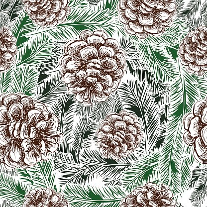 pine cones and spruce branches pattern