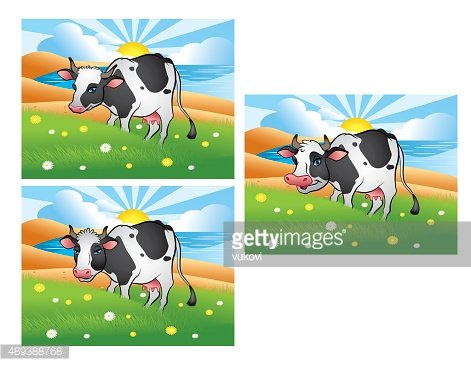 Three different cows on the green meadow