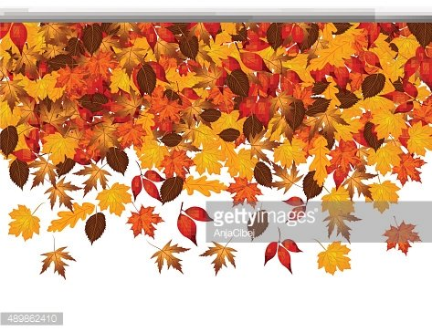 Autumn leaves falling from top