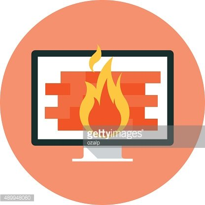 Firewall theme, flat style, colorful, vector icon for info graph
