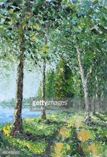 Trees along the lake in the woods