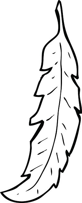 line drawing cartoon feather