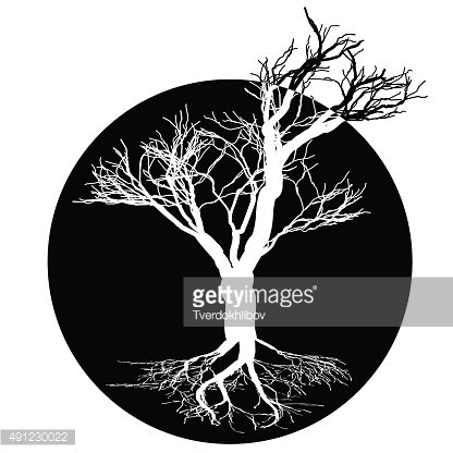 Round logo a tree with roots and crown without leaves