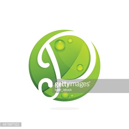 P letter with green leaves and dew drops.