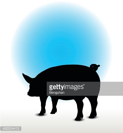pig silhouette