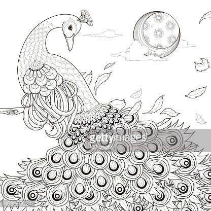 Graceful Peacock Coloring Page Clipart Image