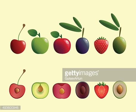 Fruit And Olives Vector Illustrations