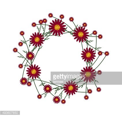 Beautiful Red Daisy Wreath on White Background