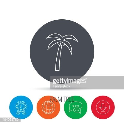 Palm tree icon. Travel or vacation symbol.
