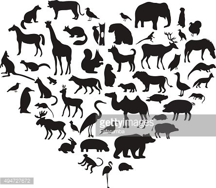 Vector set of very detailed animal silhouettes with name
