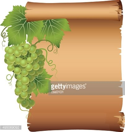 Grape branch with scroll parchment