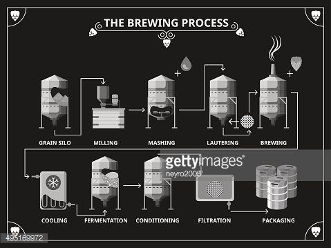 Beer brewing process. Vector beer production infographic set