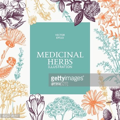 Vector card design with hand drawn herbs.