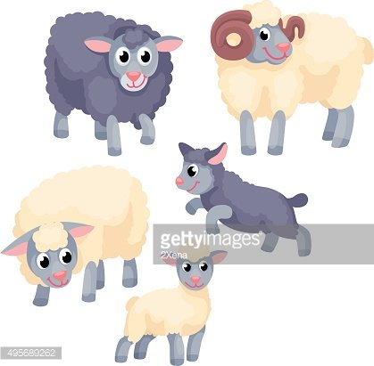 Tree adult sheep with young lambs on the white background