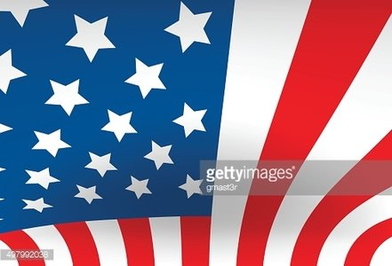 United States Flag Vertical Waving Vector