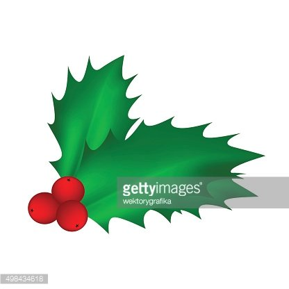Holly berry , Christmas leaves and fruits icon,