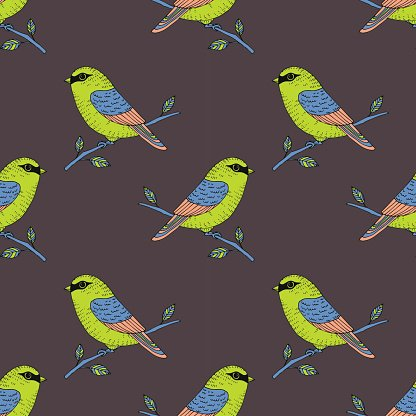 Vector cute colorful canary bird seamless pattern