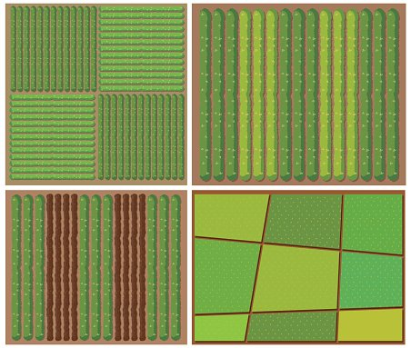 Pattern crops from top view