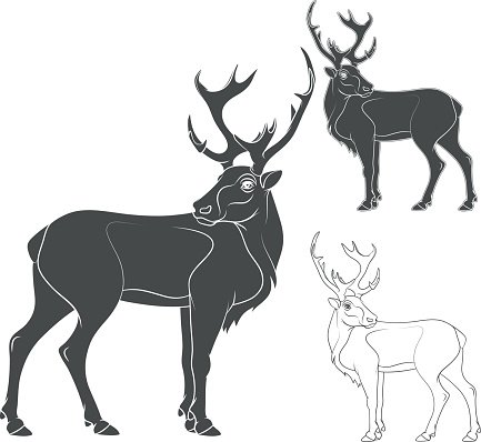 Black and white vector illustration of a deer. Isolated objects.