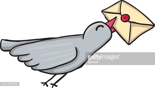 Painted carrier pigeon