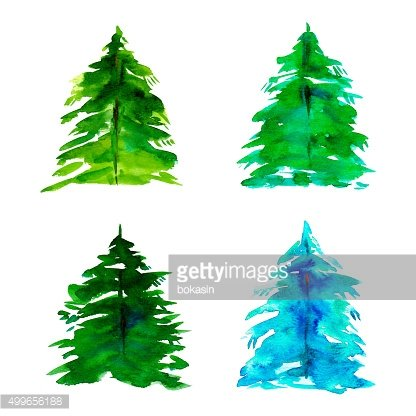 Hand drawn watercolor fir-tree for Christmas card set of four