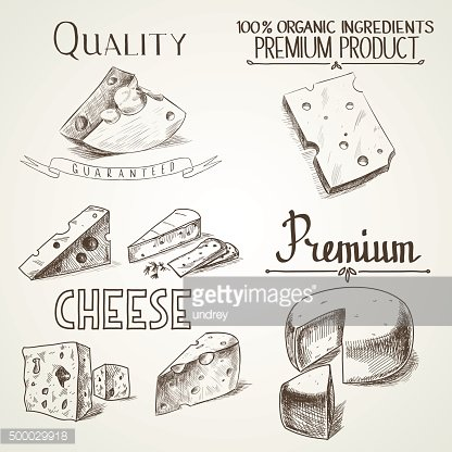 Hand drawn doodle sketch cheese with different premium quality types