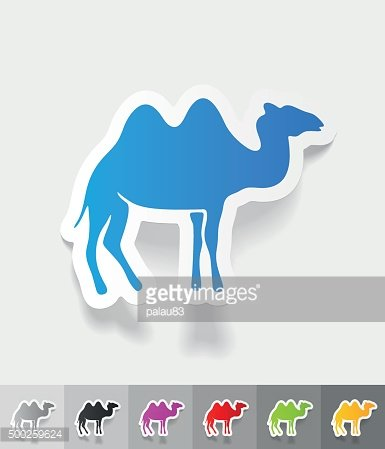 realistic design element. camel