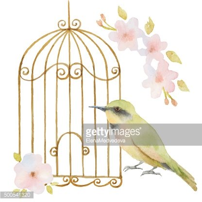 Watercolor bird, cage and flowers.