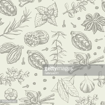 Seamless pattern with spices and herbs