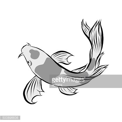 Gold fish collection,Vector illustration of gold fish, Vector illustration