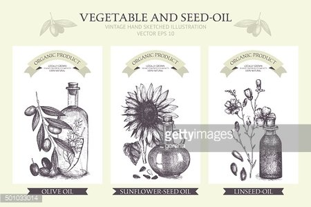 Decorative engraved oil sketch isolated on white.
