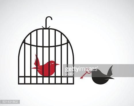 Bird in the cage and outside the cage and key.