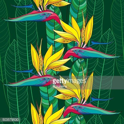 Seamless pattern with Strelitzia reginae flower and ornate leaves