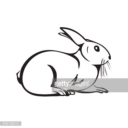 Isolated outline rabbit