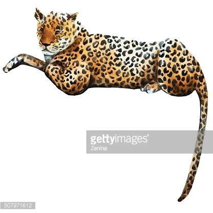 Watercolor vector leopard