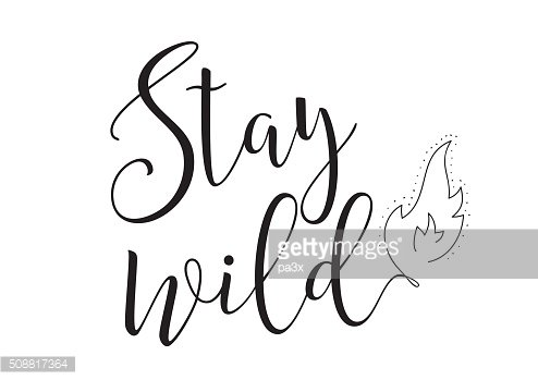 stay wild inscription. Greeting card with calligraphy. Hand drawn design