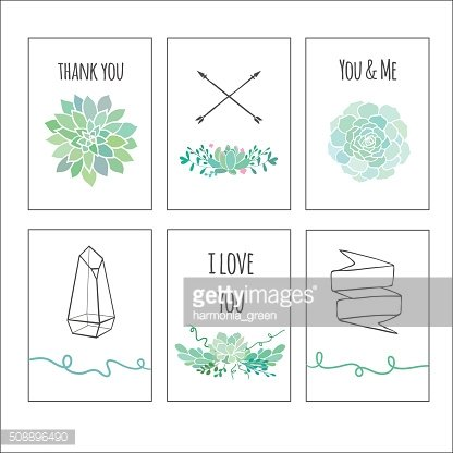 set of cards with succulents
